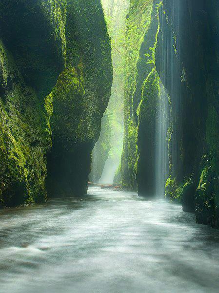 Oneonta-Gorge-Oregon-Darshan-Kaloliya